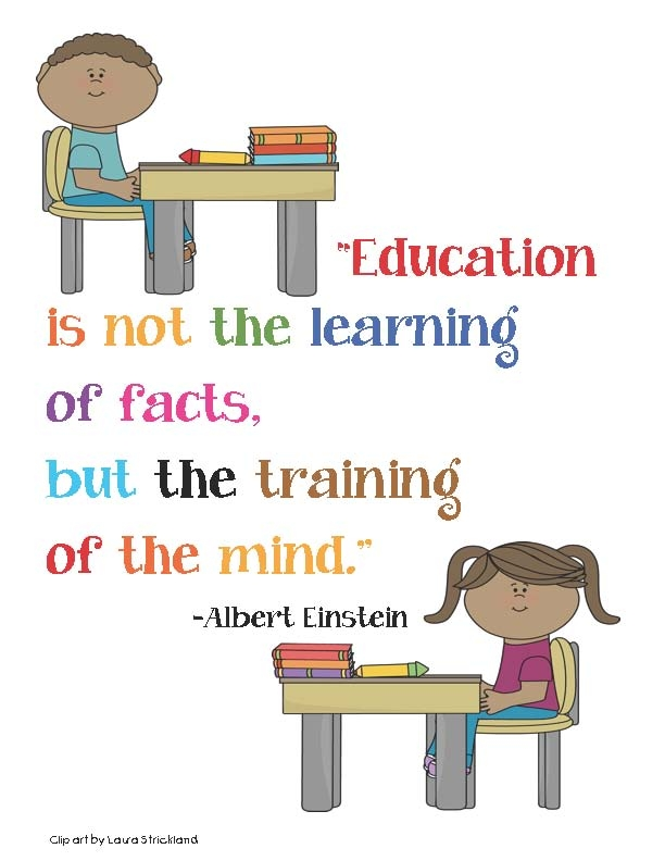 What is the definition of education?