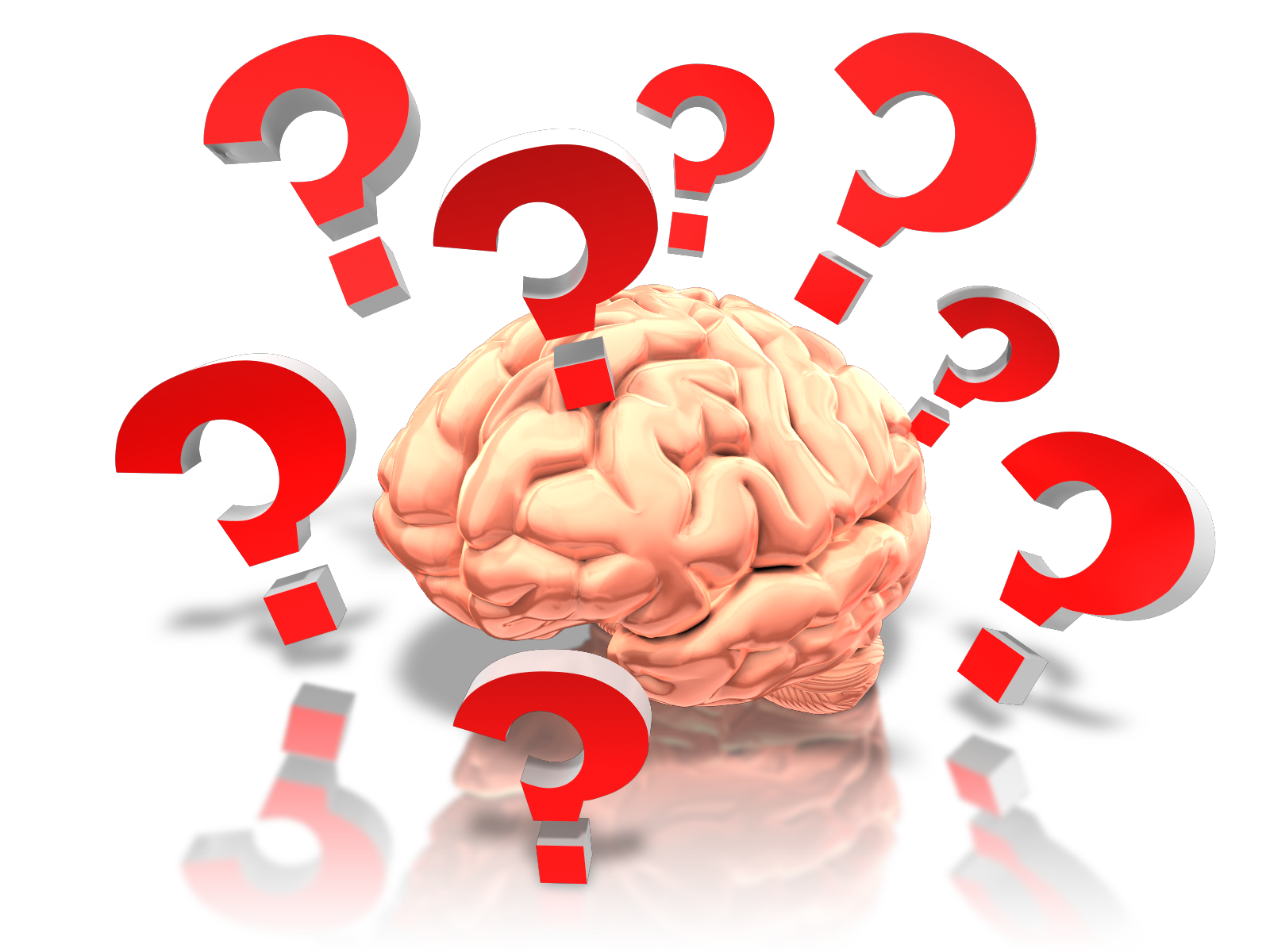 brain_with_questions_1600_clr_9219